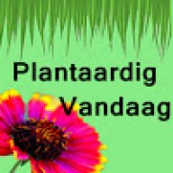 Plantaardigvandaagjurry